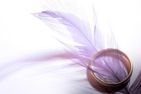 decor-feather-ring-9798