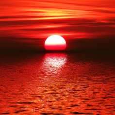 Red_Sunset-wallpaper-10461537